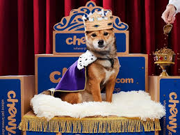 dog-on-throne-with-crown